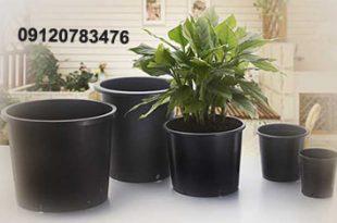 گلدان پلاستیکی گلخانه ای ارزان